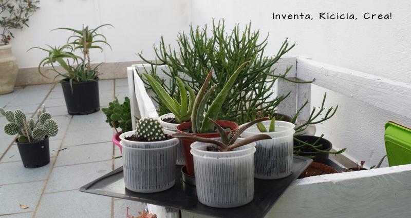 Vasi di plastica colorati per piante idea creativa della for Caratteristiche di design della casa