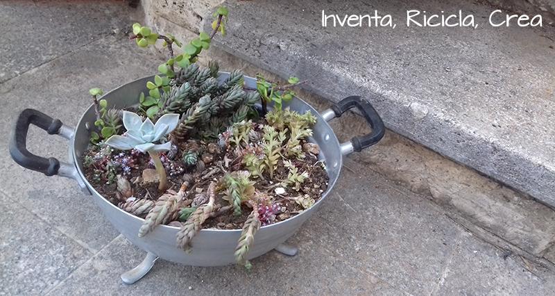 vasi_piante_grasse