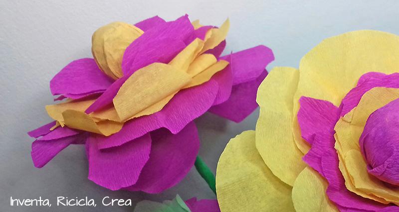 fiori_lecca_lecca